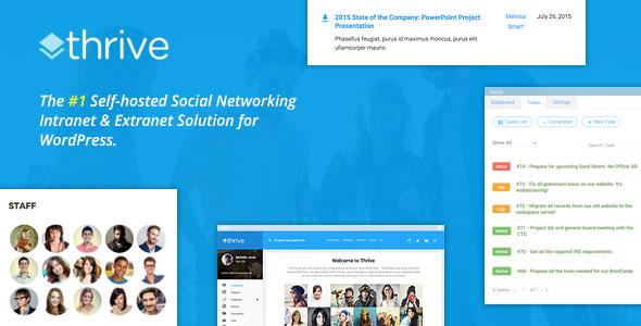 Thrive v1.8.6 – Intranet & Community WordPress Theme