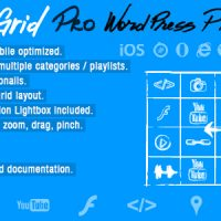 دانلود افزونه Infinite Grid Pro v1.0 – WordPress Plugin