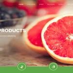 قالب جدید و شیک Organic Life برای جوملا 3.3