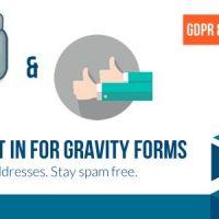 دانلود افزونه Double Opt in for Gravity Forms v1.8.1