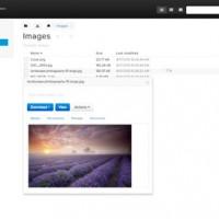مدیریت فایل ها به صورت حرفه ای با اسکریپت Mollify